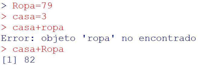 Errores en contenidos básicos en R